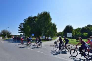 Все – на велосипеды, и – вперед, по дорогам Хорватии!